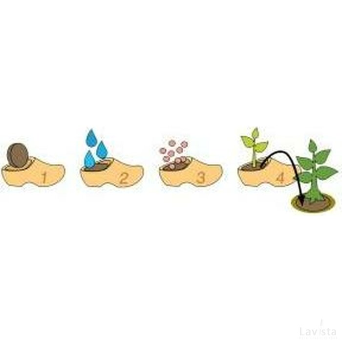 Flower Clogs Forget-Me-Not Tulp oranje
