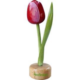 Tulip pedestal 20 cm ( big ), red white Amsterdam