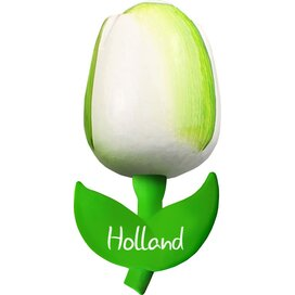 Tulip magnet 9 cm ( big ), white green Holland