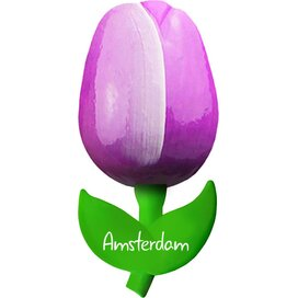 Tulip magnet 6 cm ( small ), purple white Amsterdam