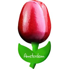 Tulip magnet 6 cm ( small ), red white Amsterdam